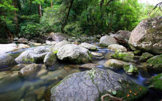 природа, ручей, streams, desktop, free, static, full,