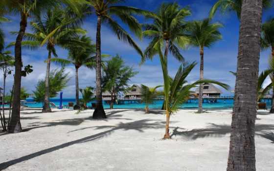praia, paisagem, maldives, bungalows, мар, grande, остров, пальмы,