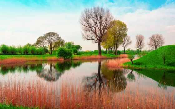 природа, красивый, май, весна, утро, хороший, wish, великобритания