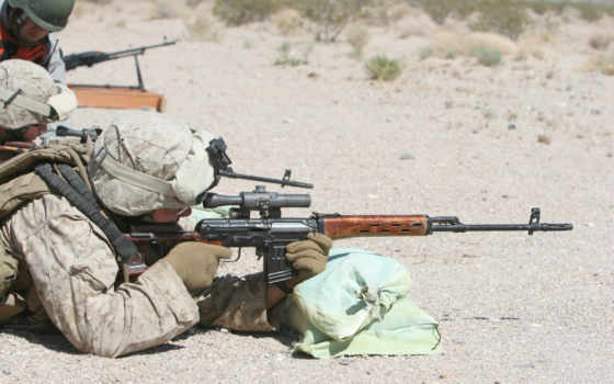 американский, стрельба, свд