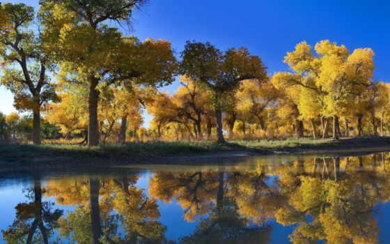 природа, осень Фон № 100069 разрешение 3000x2000
