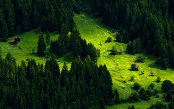 пейзажи -, отпадные, высоком, description, добавляем, картинкам, разрешений, постройки, красивые, луг, природа,