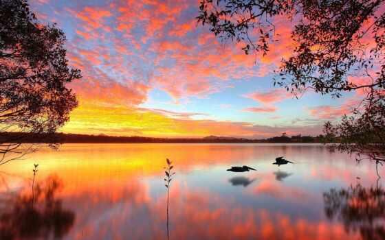 озеро, doonella, noosa, heads, австралия, queensland, закат,