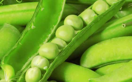 stock, peas, зелёный, images, pea, фото, photos, fresh, free,