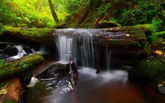 you, река, лес