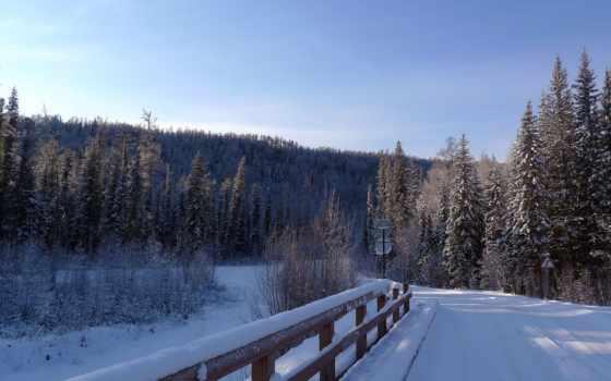 winter, снег, зимние, мост, елка, até, дорога, главная, небо,