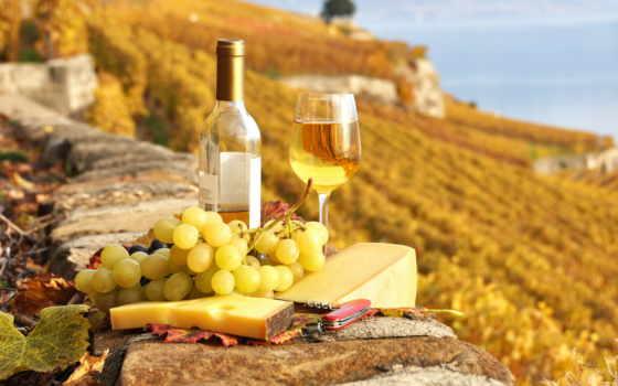 french, виноград, франции, осенняя, вино, сыр,