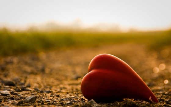 love, любви, одиночка, трудно,
