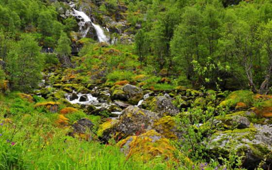 природа, водопады, park