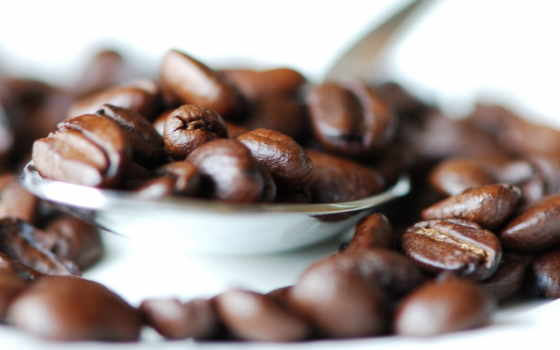 coffee, belleza