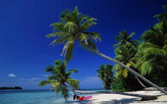 море, природа, пальмы, bay, баунти, гамак, релакс, смотреть, фотообои,