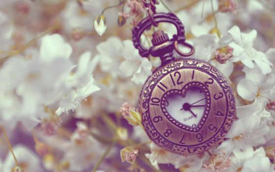 часы, карманные, старинные, металл, cvety, цепочке, макро, книга, pattern, цепь,
