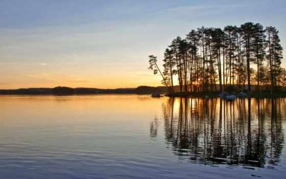 закат, hiding, сзади, trees, озеро, tall, side,