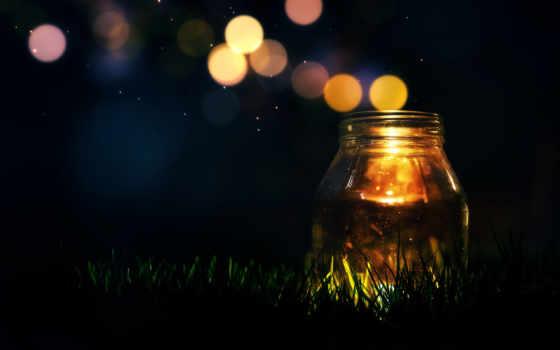 ночь, трава, one