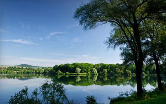 деревя, река, summer