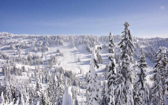 winter, landscape, снег, ёль, природа, небо, иней, картинка, года, time, елка,