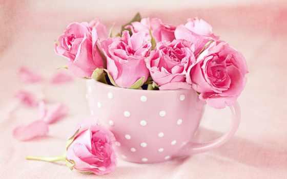 троянди, розы, минут, нежно, поезда, ngày, цветочные, творчества, community,