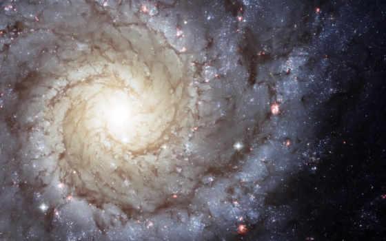 галактика, спиральная Фон № 24367 разрешение 1920x1200