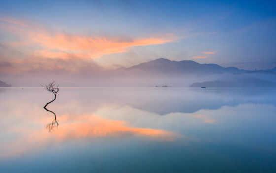 озеро, дерево