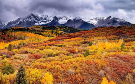 осень, горах, горы, лес, краски, растения, скалы, бесплатные,