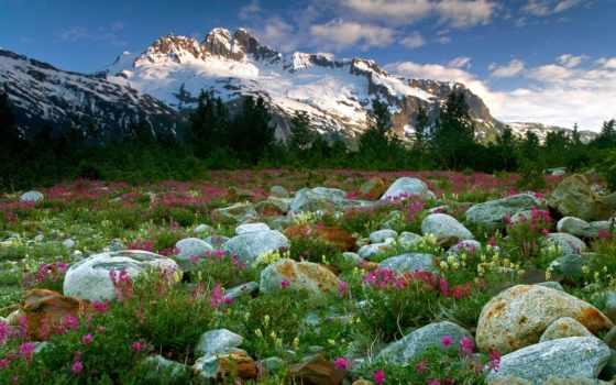 весна, горах, когда, liveinternet, весной, кб,