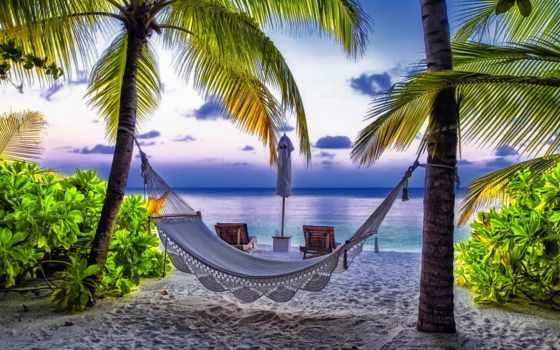 пляж, desktop, landscape