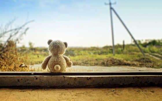 мишка, toy, природа, мишки, медведь, картинка, journey, игрушки, настроения,