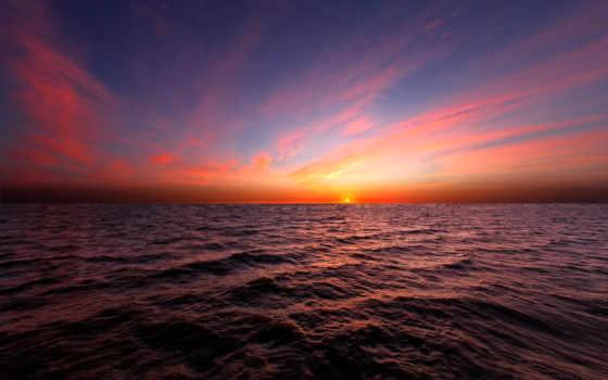 закат, красивые, море, обойный, микс, солнца, пальмы, world, istanbul, щенята,