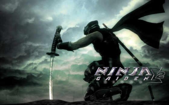 ninja, gaiden, facebook