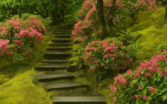 garden, japanese, фотообои, лестница, растения, цветы, зелёный, trees, park, стену,