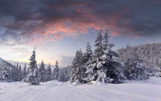 winter, снег, елки, oblaka, рассвет, лес, сопки,
