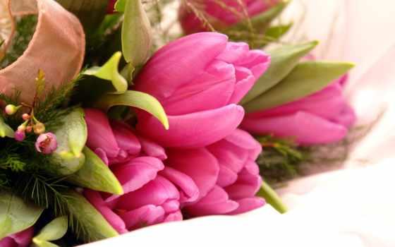 рождения, cvety, днем, день, красивые, красивая, tatyana, если,
