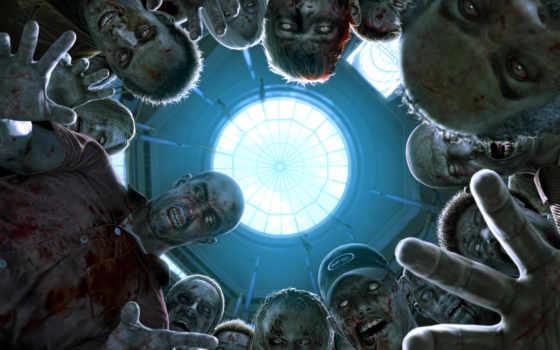 зомби, фильмы, об, anime, листь, себе, апокалипсис, выживания, могут,