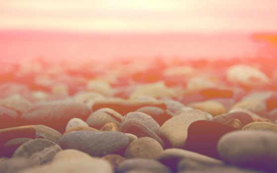 море, камни, макро, природа, галька, камушки, берег, water, ракушки,