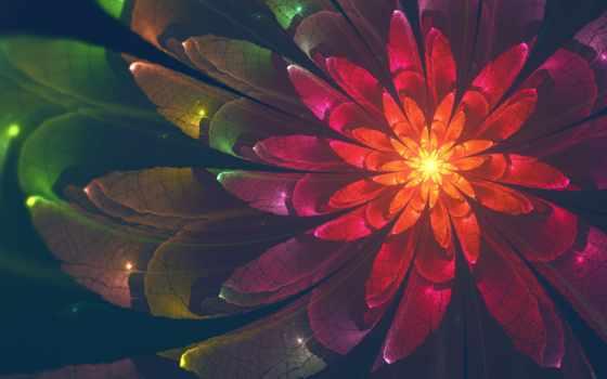 desktop, abstract, free, цветы, resolutions,