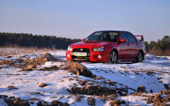 импреза, красная, снег, лес, машина, зима,