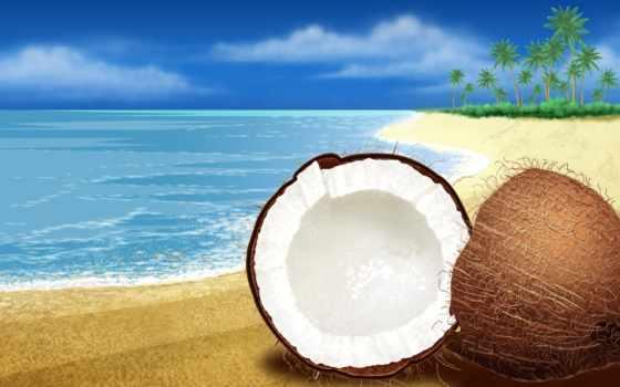 summer, кокосовый, море