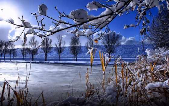 hansweert, winter, pluimpot, westerschelde, des, foto, со, снег, zeedijk, great, автоугонщик,