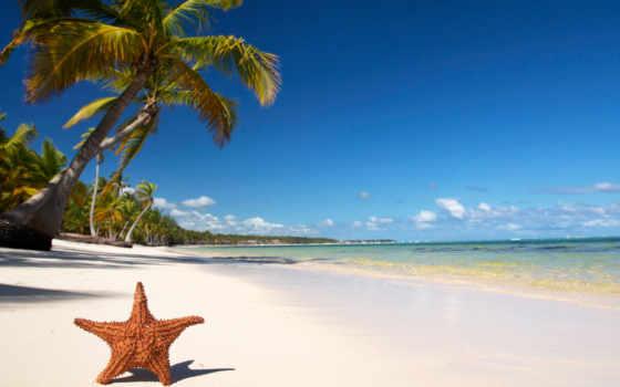 пляж, tropics, palm, море, песок, берег, пальмы, закат, широкоформатные,