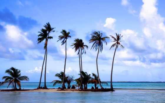 пальмы, пляж, море Фон № 141262 разрешение 1920x1080