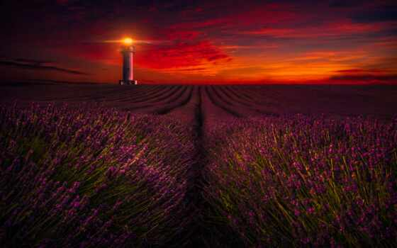 lavender, закат, lighthouse, поле, ферма, природа,