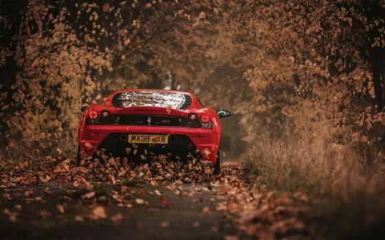ferrari, осень, red, лист, scuder, racing, car, взгляд, сзади, дорогой