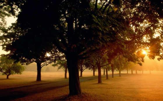 sunrise, park