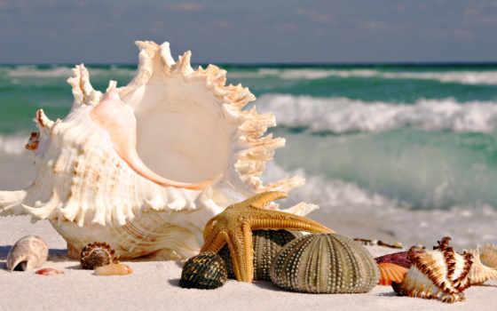 пляж, море, песок Фон № 154296 разрешение 1920x1080