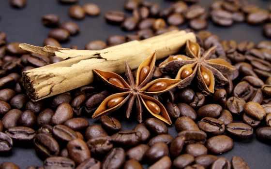 coffee, зерна, cinnamon, бадьян, anise, палочки, специи, cup, анис