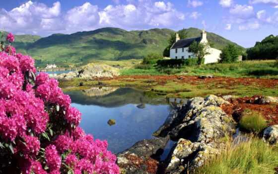 природа, landscape, красивый, гора, цветы, весна, красавица, scotia, лет, taiwan, озеро