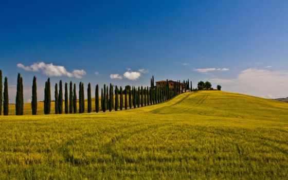 toscana, природа, сиена, italy, landscapes, val, поля, cipressi, tuscany, dorcia,