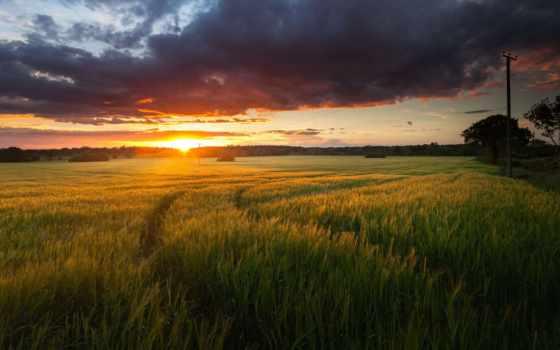 утро, quotes, хороший, romantic, природа, driver, time, one, love,