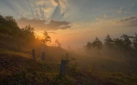 осень, закат, природа, mix, лес, fore, broadleaf, пожаловаться, добавить