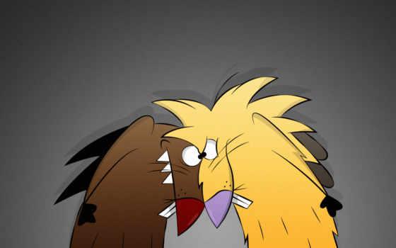 angry, beavers